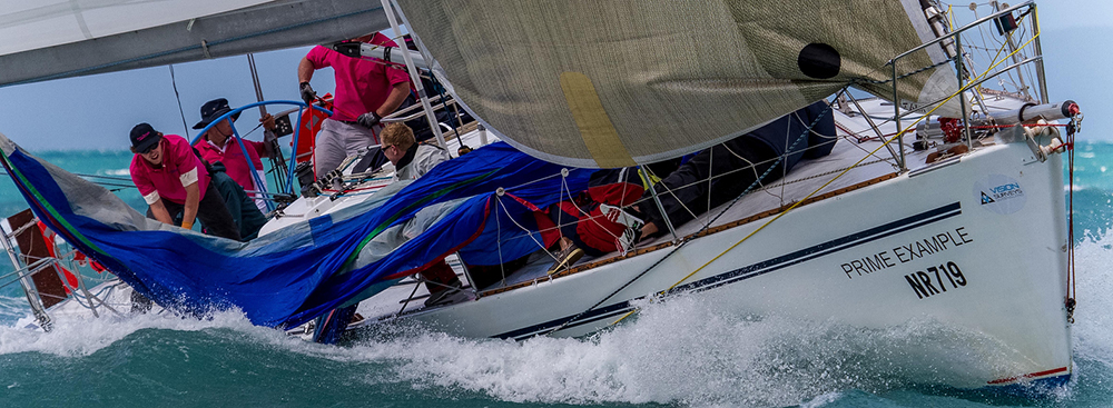 Prime Example has shown true grit to get to Sail Port Stephens.